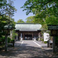 新緑と拝殿